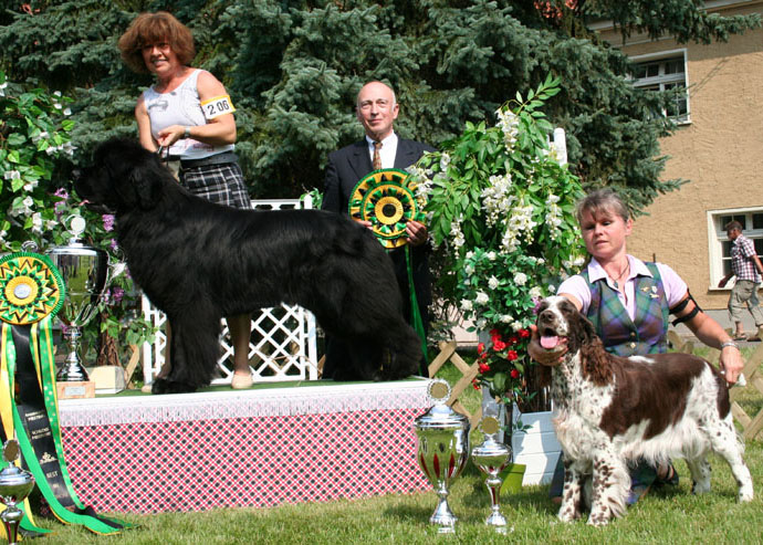 Res Best in Show